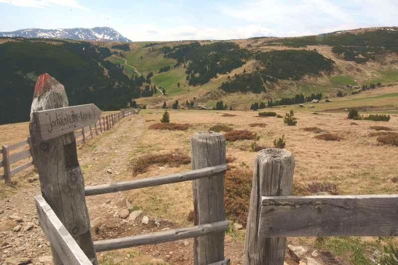 Blick über die Latzfonser Alm auf dem Wanderweg zum Latzfonser Kreuz
