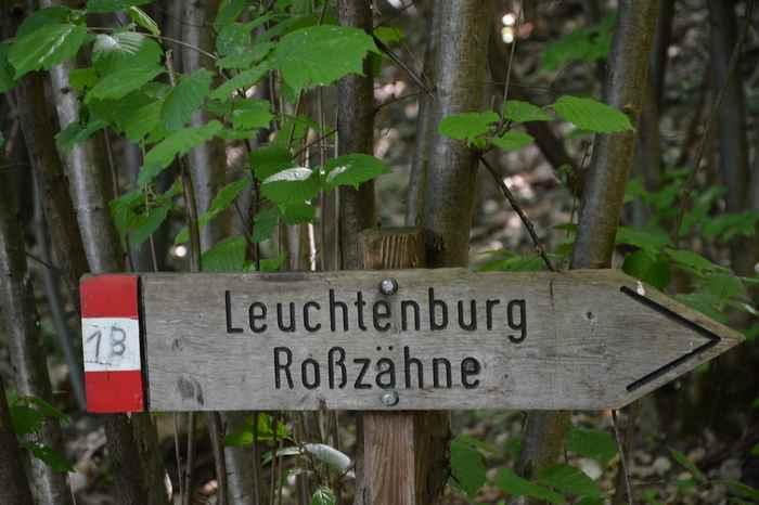 Hierhin wollen wir. Die Schilder zeigen den Weg zur Leuchtenburg - leicht zu wandern mit Kindern