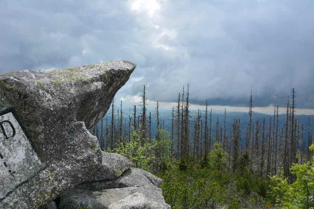Große Granitsteine prägen das Landschaftsbild am Lusen