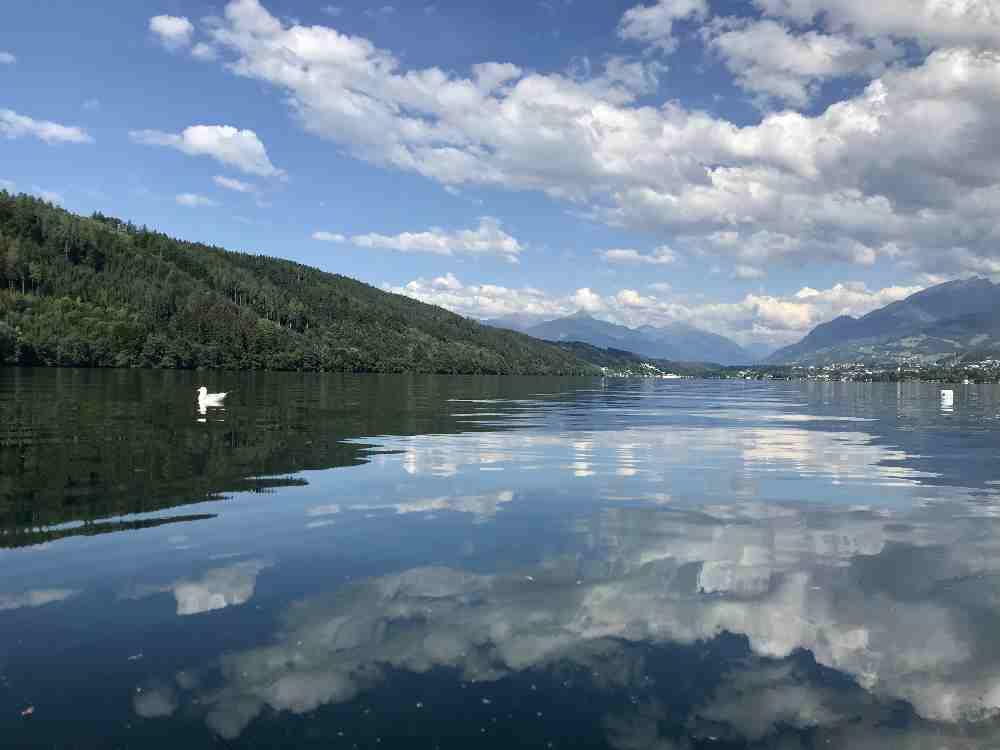 Möwe Moritz folgt uns in sicherer Entfernung im Angelurlaub mit Kindern