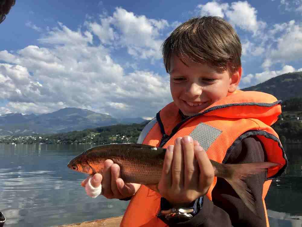 """""""Mama, wie ist das mit den Fischen?"""" - die Antwort gibt´s auf der wöchentlichen Fischtour."""