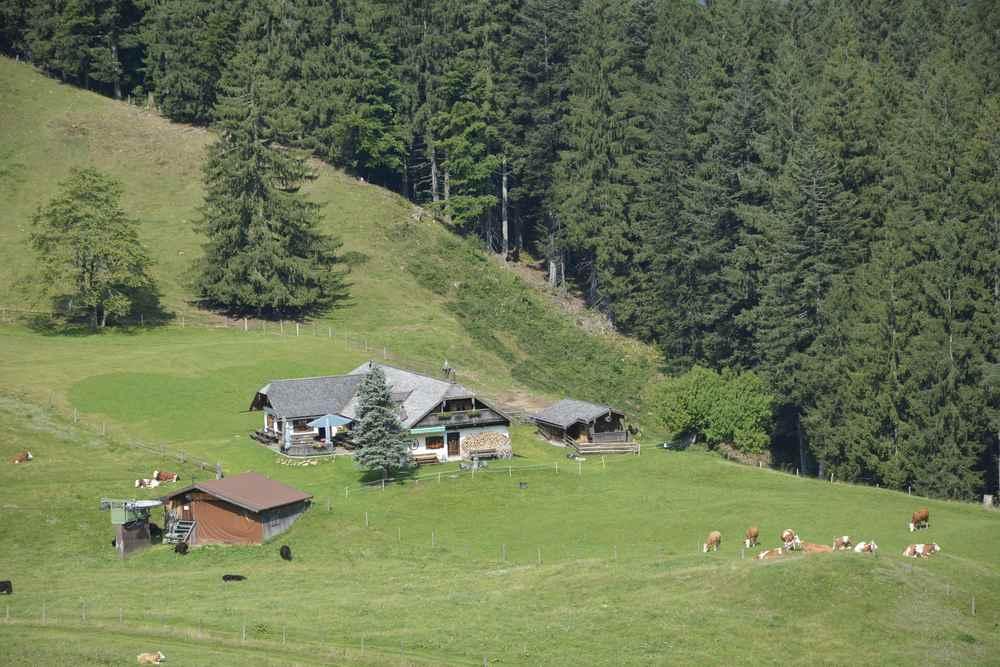 Das ist die Mittereggalm im Salzkammergut - auf halber Strecke zur Oberwiesalm
