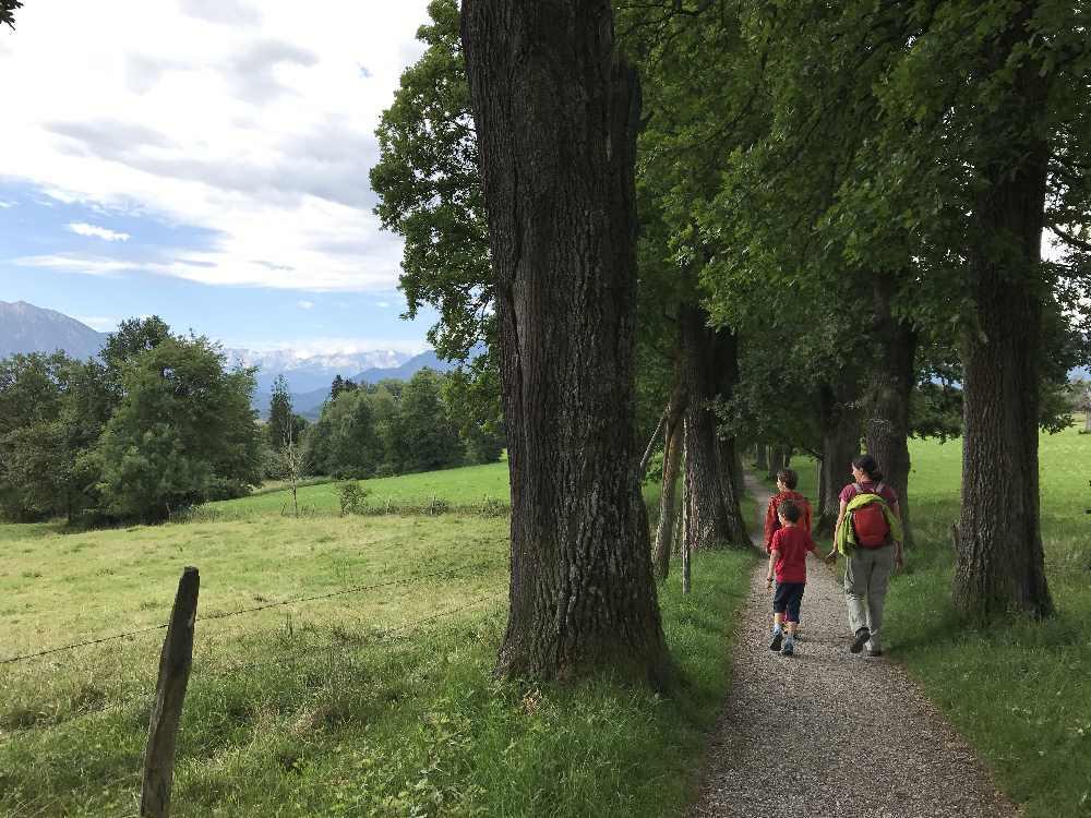 München wandern mit Kindern - hier in Murnau auf dem Drachenstich Weg