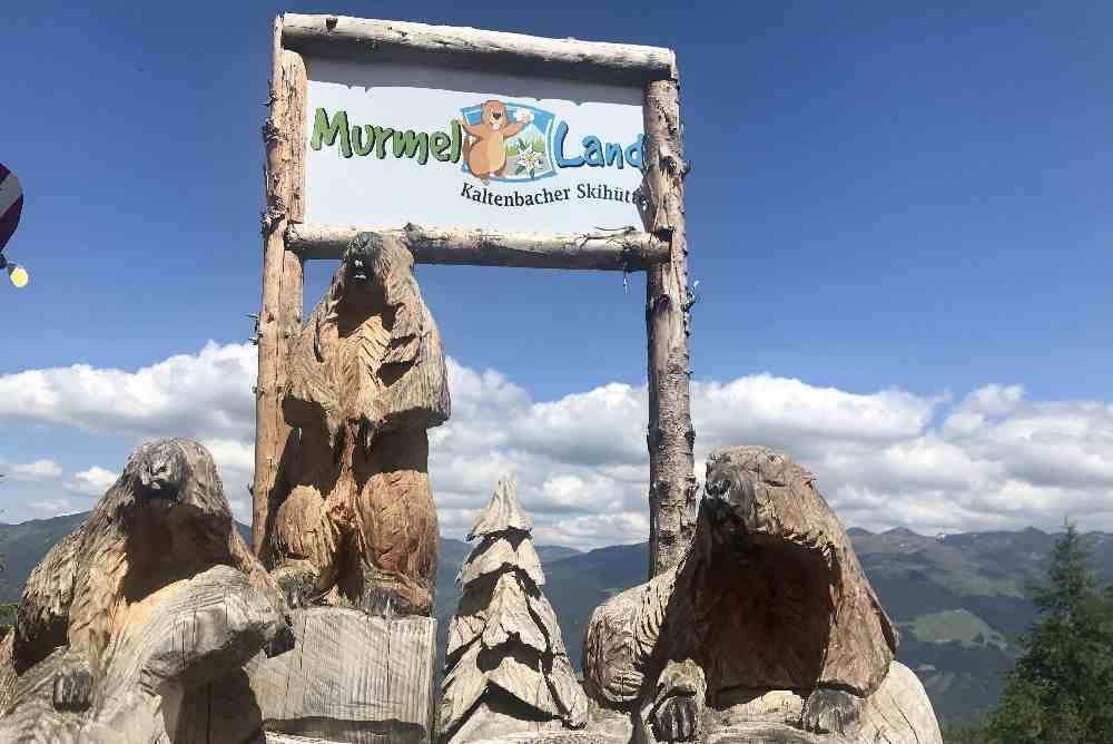 Am Eingang zum Murmelland Spielplatz begrüßen uns die Murmeltiere aus Holz...