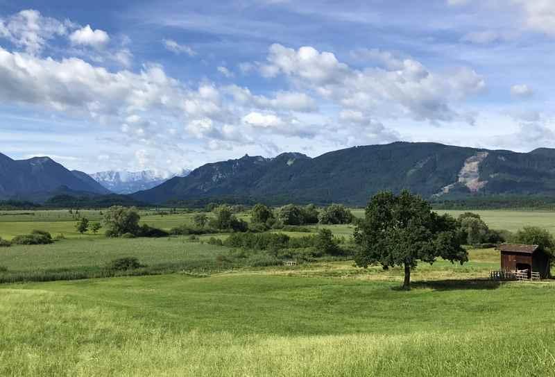 Sooo schön: Unser Murnauer Moos Ausflug mit Kindern