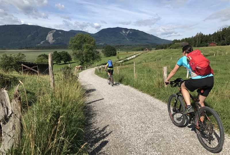 Murnau mit Kindern: Der nächste Tag: Mit dem Fahrrad geht es ins Murnauer Moos