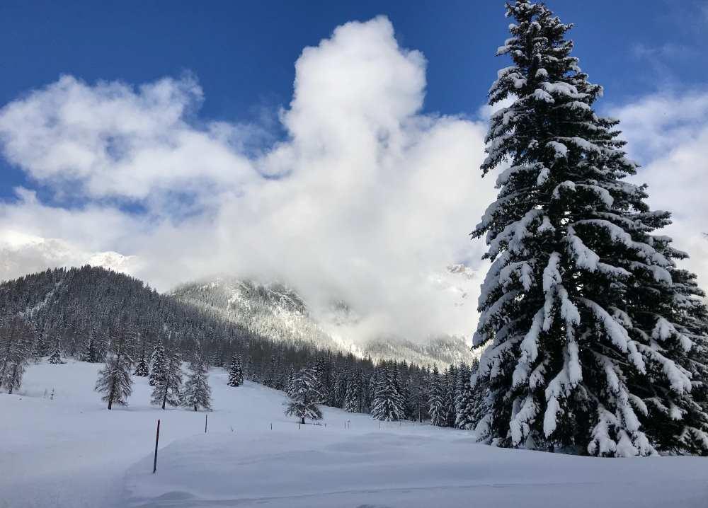 Skigebiet Niederösterreich: Tipps für den Winterurlaub in Niederösterreich mit Kindern
