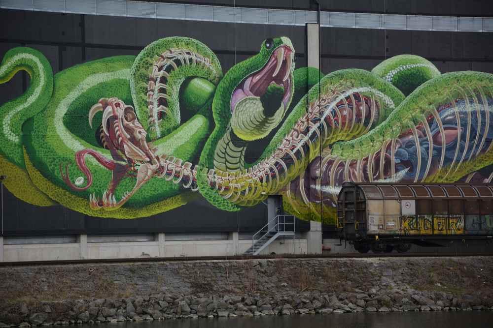 Bei der Mural Harbor Tour in Linz sehen wir diese riesigen Gemälde an den Hallen