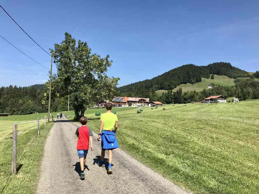 Buchenegger Wasserfälle mit Kindern: Über die landschaflich aussichtsreiche Teerstraße wandern wir zurück zur Hündle - Talstation