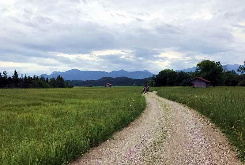 Mit dem Fahrrad oder zu Fuß durch das Obernacher Moos