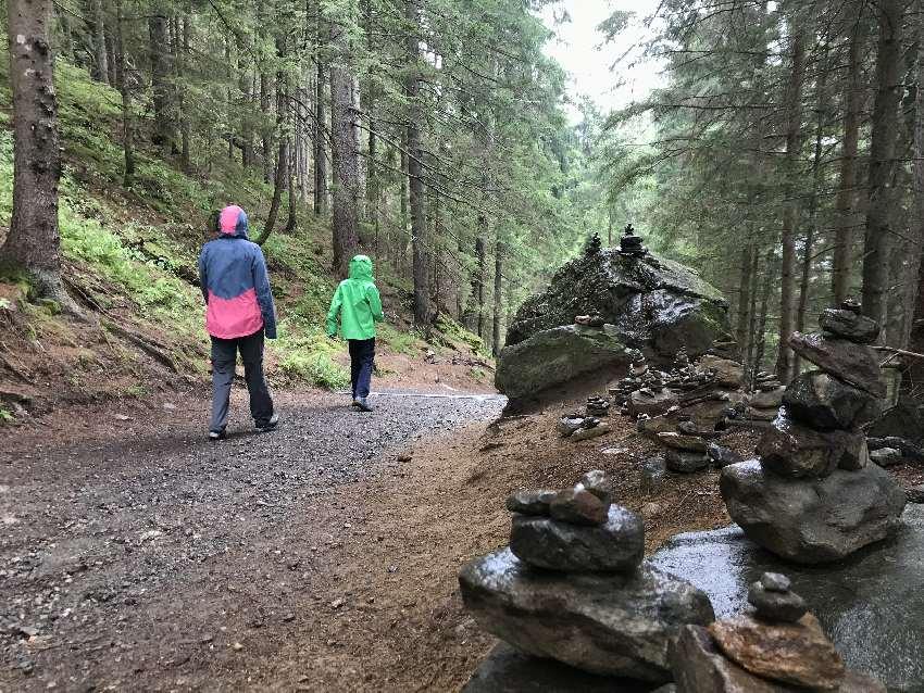 Auf dem breiten Weg wandern wir durch den Wald zurück nach unten zum Ausgangspunkt