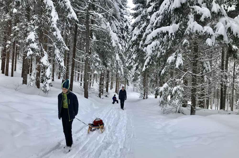 Weissensee rodeln - Stimmungsvoll ist es durch den verschneiten Winterwald, aber auch anstrengend.