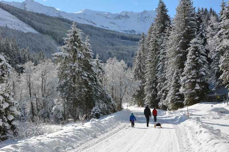 Rodeln im Winterurlaub mit Kindern Österreich