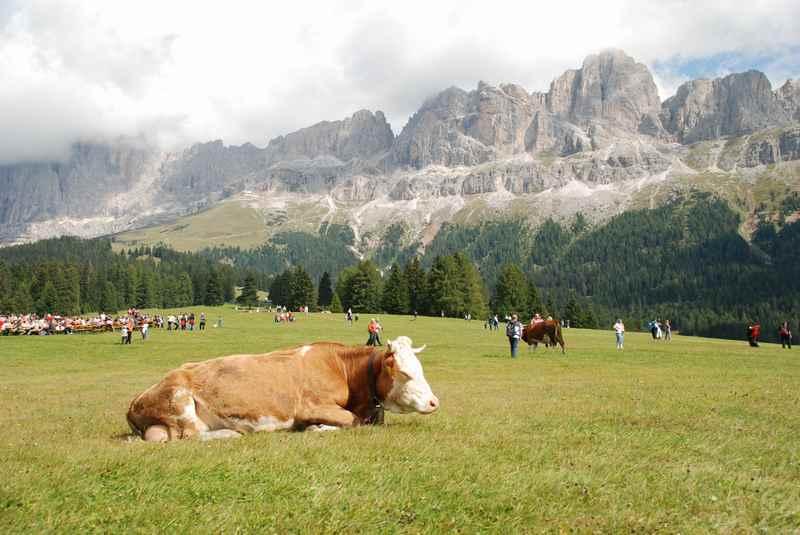 Am Rosengarten wandern mit Kindern in Südtirol
