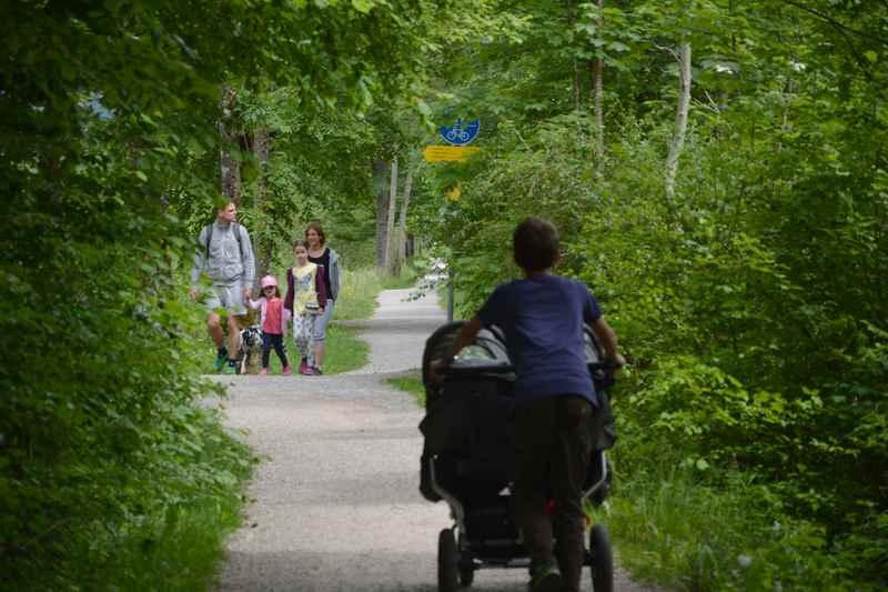 Nach Rottach - Egern durch das dichte Grün wandern mit Kinderwagen