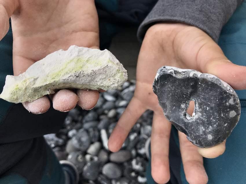 Unsere Funde: Kreide und Hühnergott - so heißen die Stein mit den Löchern