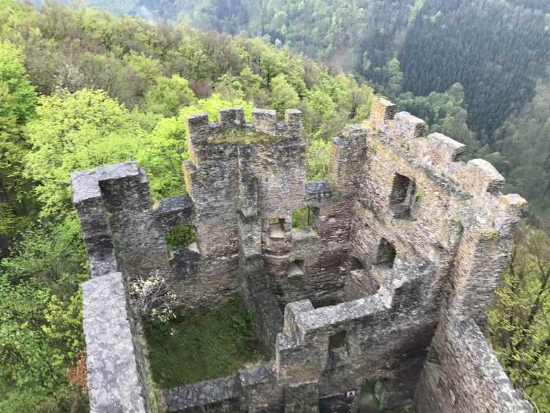 Die Ruine Stauf ist das Ziel unserer Familienwanderung nahe der Donau