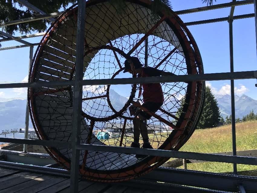 Ausflugsziele Salzburg mit Kindern - das Hamsterrad auf der Schmittenhöhe