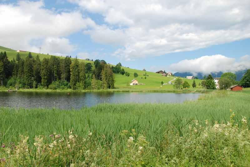 Spaziergang rund um den Schwendisee im Toggenburg