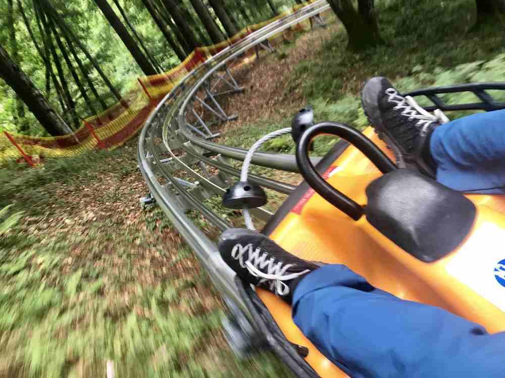 Oder rasant auf dem schnellen Coaster in Oberammergau am Kolbensattel