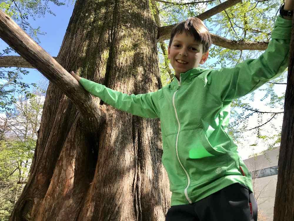 """Mit dem Reima Hoddie """"Reimu"""" klettert er gerne zwischen den Bäumen"""