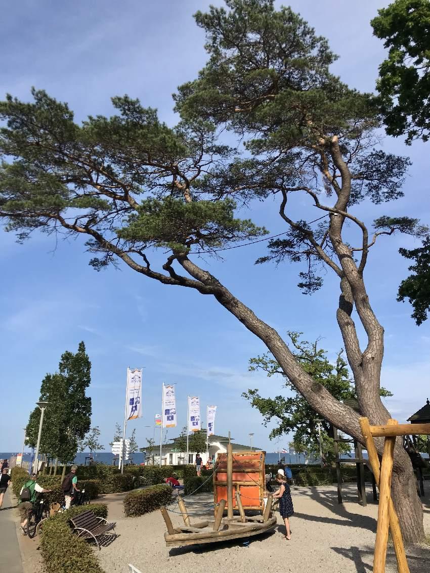 Schöner Spielplatz Rügen, direkt am Strand und der Seebrücke Göhren