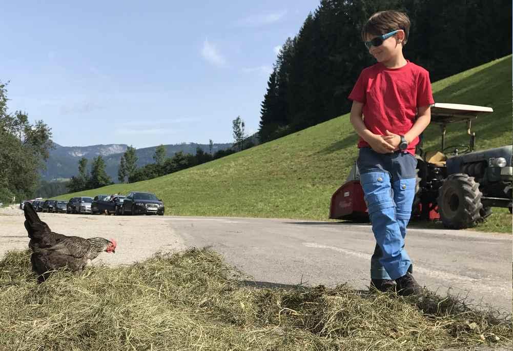 Echtes Landleben: Hier dürfen die Hühner noch frei herumlaufen - das findet unser Kleiner cool