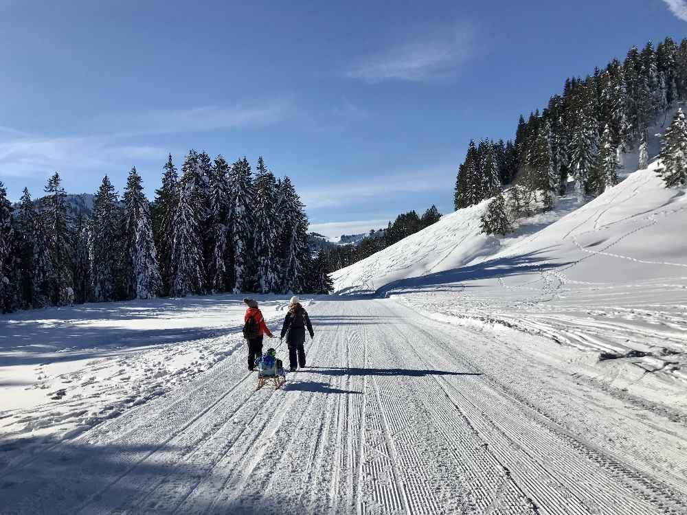 Winterwandern Oberstaufen: Besser von der Bergstation der Imbergbahn loswandern - dann kommst du auf diesen sonnigen Weg und sparst dir den Aufstieg im schattigen Wald