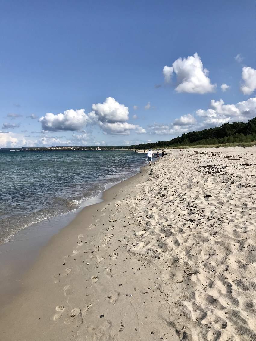 Einsamer Strand Rügen - das hat uns sehr gefallen! Der Schaabe Strand