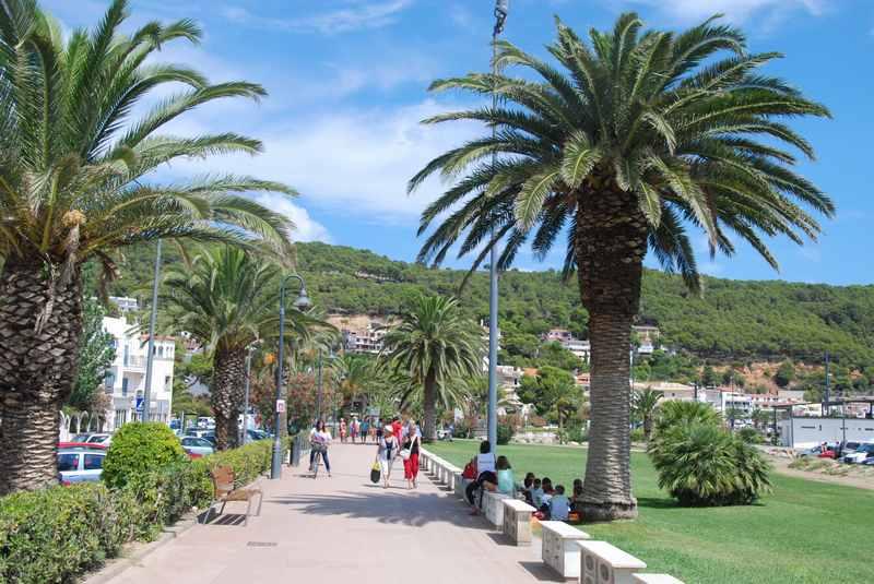 l'Estartit Spanien - die Promenade mit Palmen