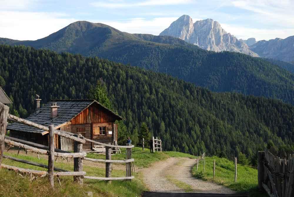 Für uns eine der schönsten Familienwanderungen in Südtirol mit Kindern: Berg und Alm mit viel Ruhe