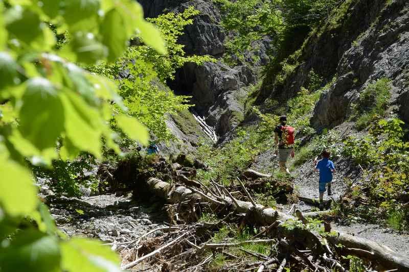 Abenteuerland für Kinder: Durch die wilde Flußlandschaft wandern