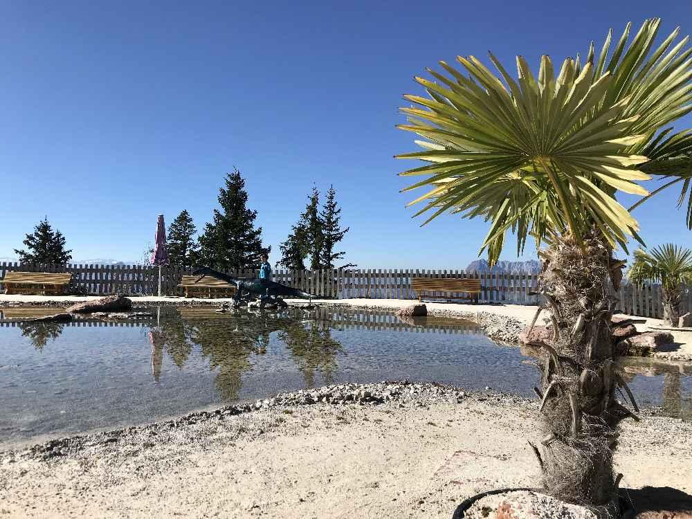 Sogar Palmen stehen am Sandstrand im Triassic Park in Tirol