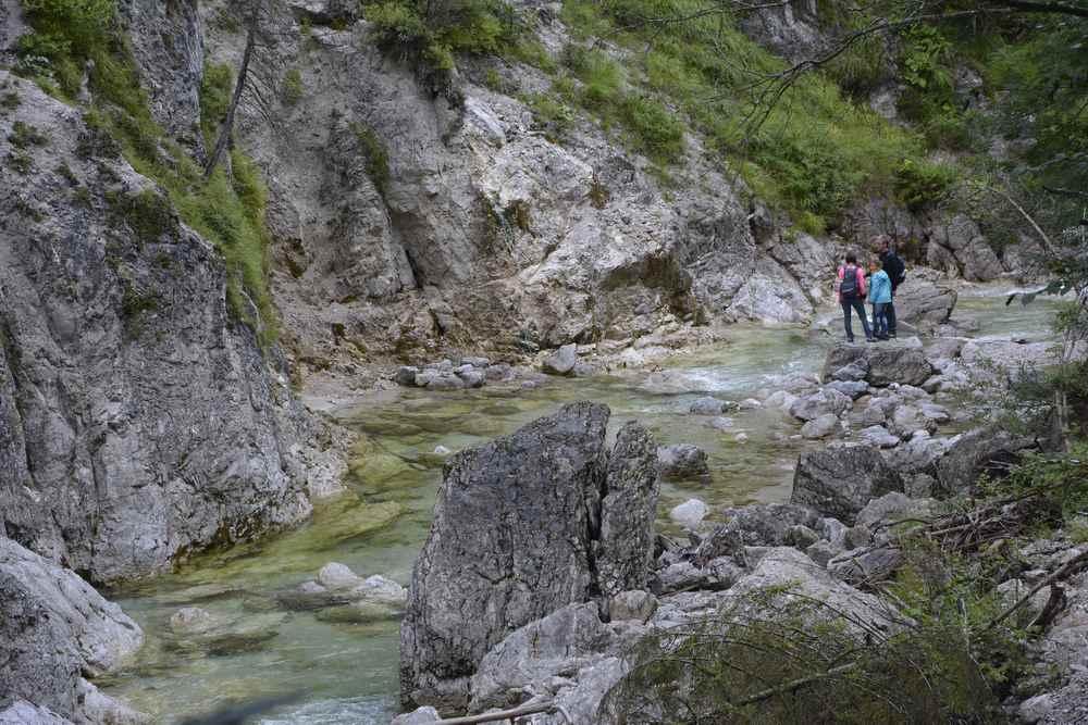Immer wieder gibt es auf der Familienwanderung einen Zugang zum Ötscherbach