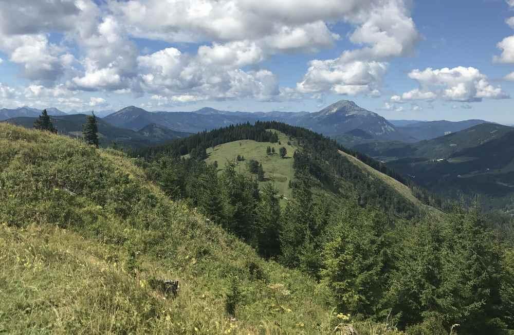 Danach brechen wir auf, um auf den Tirolerkogel zu wandern - für diese Aussicht auf den Ötscher