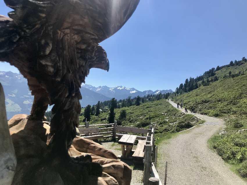 Über den breiten Weg kannst du Wandern mit Kinderwagen im Zillertal