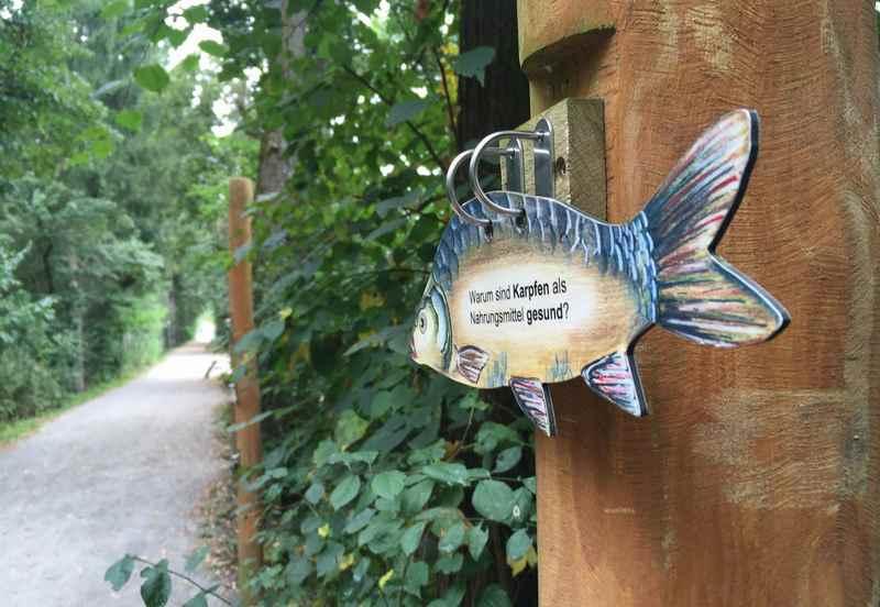Erlebnispark Wasser Fisch Natur - alles über Fische lernen
