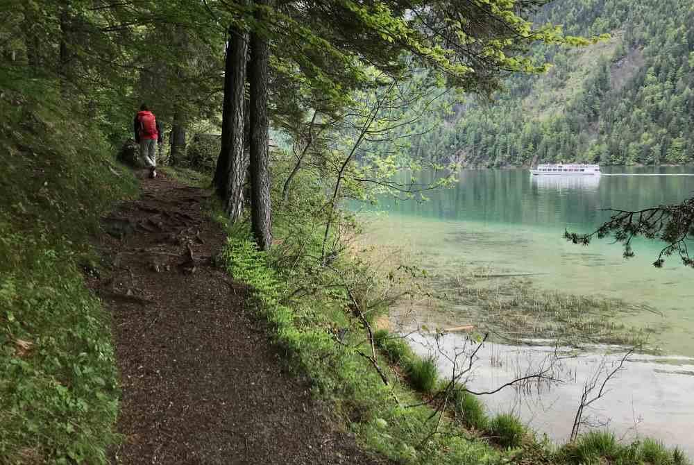 """So schön ist der Wandersteig vom """"Ronacherfels"""" in Richtung """"Kleine Steinwand"""""""