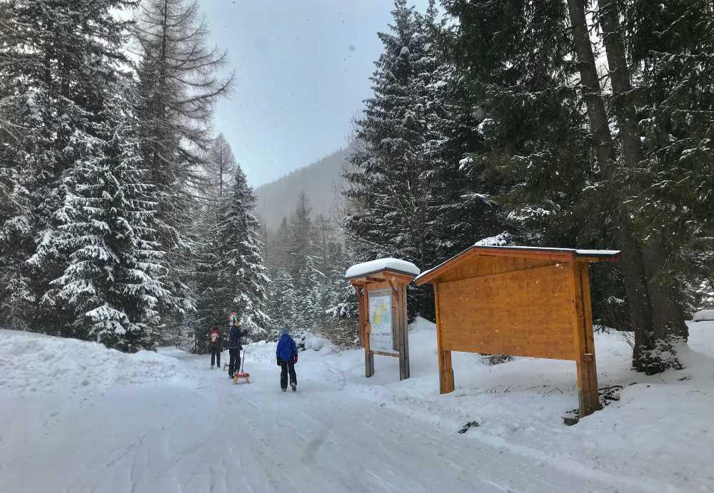 Rodelbahn Obernberger See: Im frischen Schnee starten wir die Winterwanderung auf der Rodelbahn zum Obernberger See