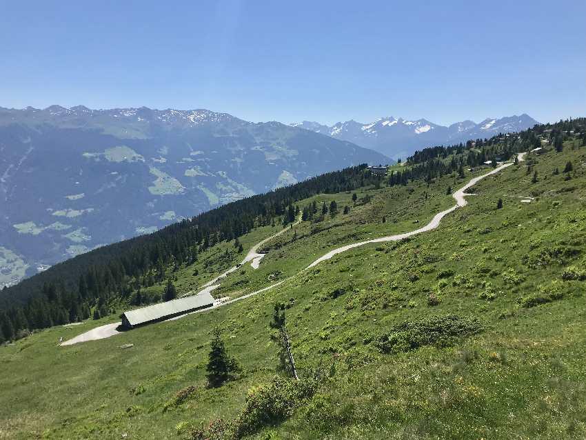 Über die Zillertaler Höhenstrasse zum Hubertus Wildtierpfad