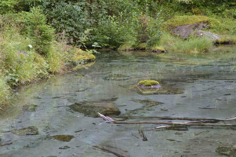 So glasklar sieht man das Wasser in der Natur nur selten