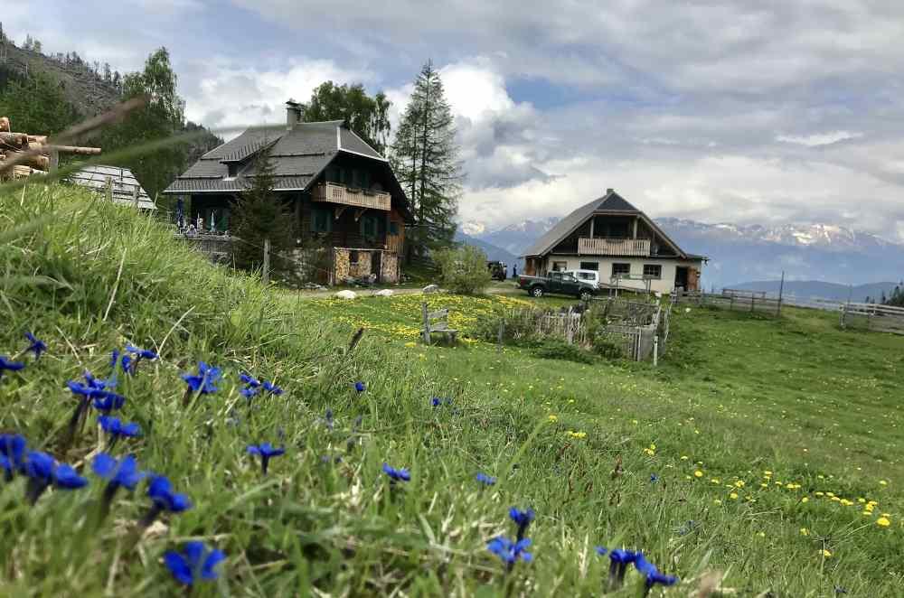 Auf eine Alm am Weissensee wandern mit Kindern - oder am türkisblauen Bergsee wandern...