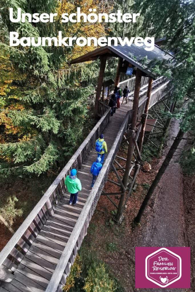 Ausflugsziele Passau mit Kindern - Der Baumkronenweg Kopfing