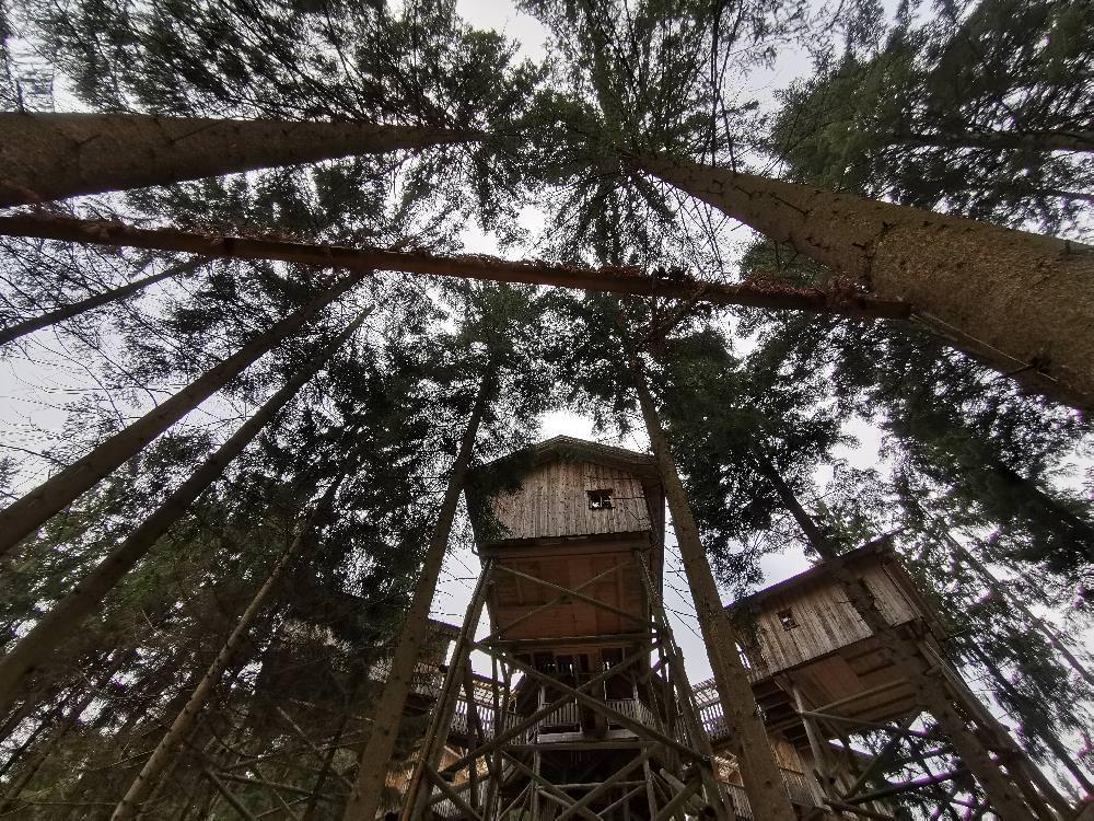 Das erste Baumhaushotel in Europa - 10 Meter oberhalb des Waldbodens