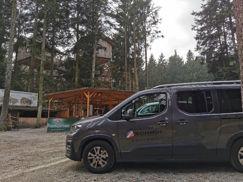 Bis zum Baumhaushotel kannst du mit dem Auto fahren, hinauf geht´s zu Fuß weiter