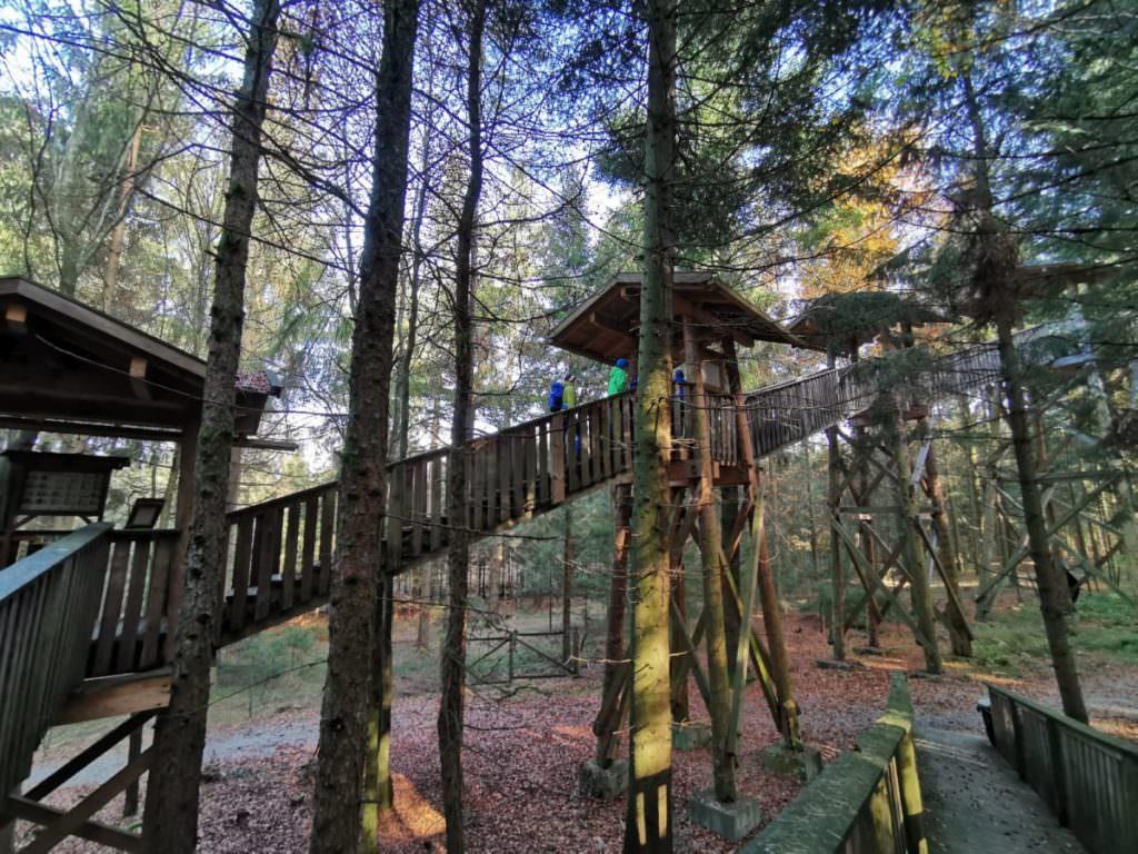 Familienurlaub Bayerischer Wald? Unsere Kinder lieben den Buamkronenweg in Kopfing