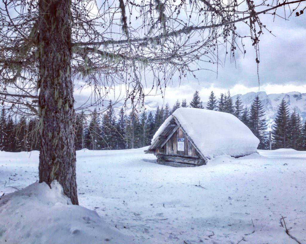 Rodelbahn Kärnten - und die Natur geniessen
