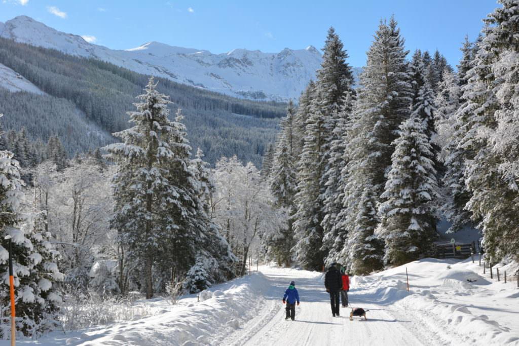 Rodeln Salzburg mit Kindern: Der Tag im Neuschnee bei Sonnenschein war traumhaft!