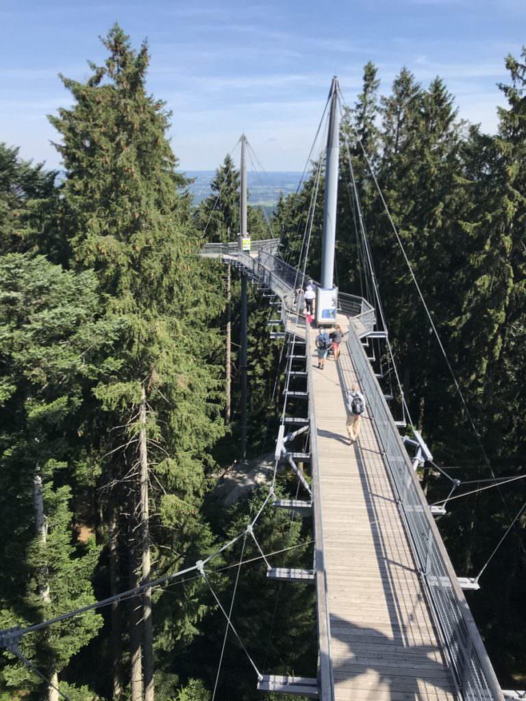 Skywalk Scheidegg - leichte Tour zum Wandern mit Kindern