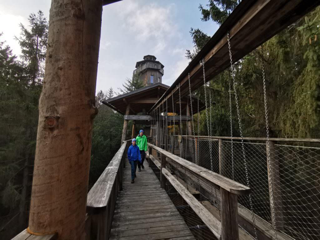 Wandern Oberösterreich - am einmaligen Baumkronenweg in Kopfing